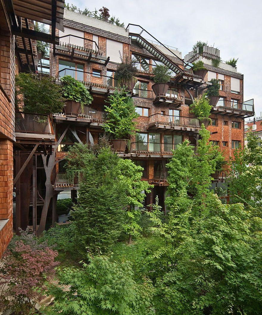 внутренний дворик дома с деревьями 25 green