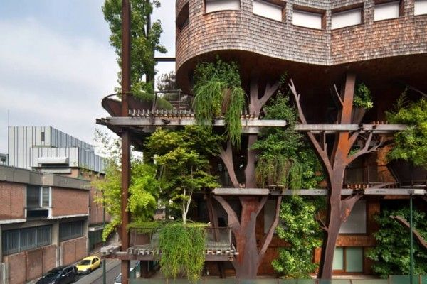 вид с улицы на зеленый дом с деревьями 25 green