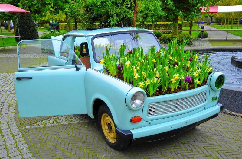 цветник в машине