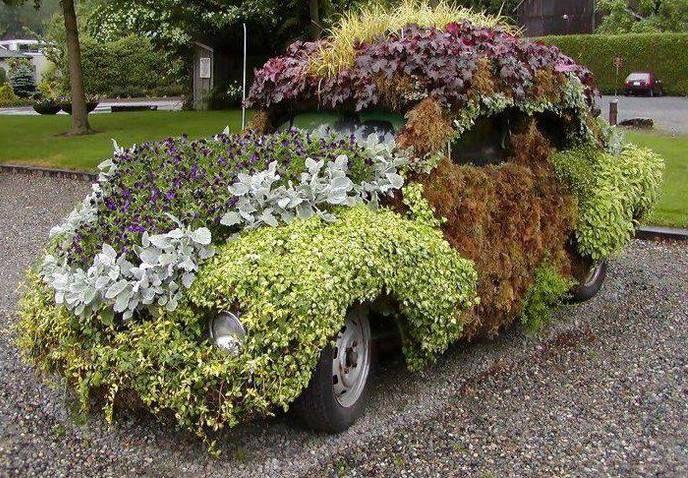 клумба на старой машине