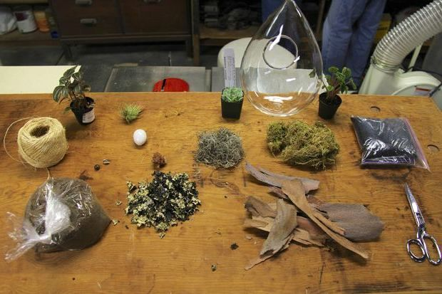 подвесной флорариум своими руками материалы